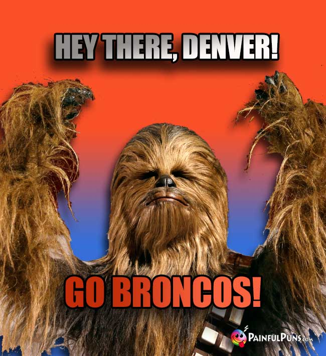 Wookie says: Hey there, Denver! Go Broncos!