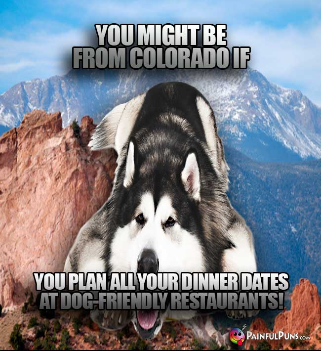 You might be from Colorado if you plan all your dinner dates at dog-friendly restaurants!