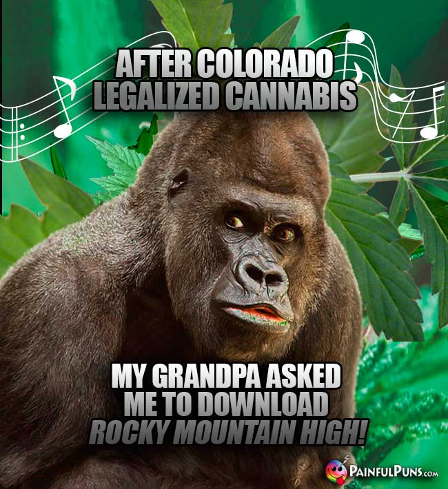 After Colorado legalized cannabis, my grandpa asked me to download Rocky Mountain High!