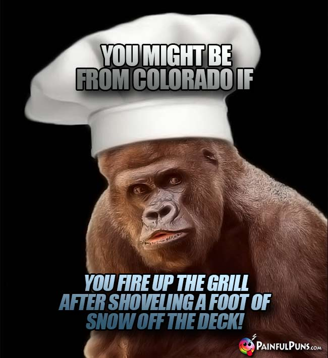 Ape chef says: You might be from Colorado if you fire up the grill after shoveling a foot of snow off the deck!