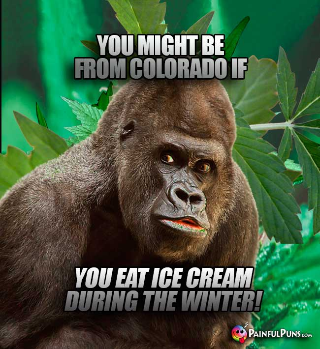 You might be from Colorado if you eat ice cream during the winter!