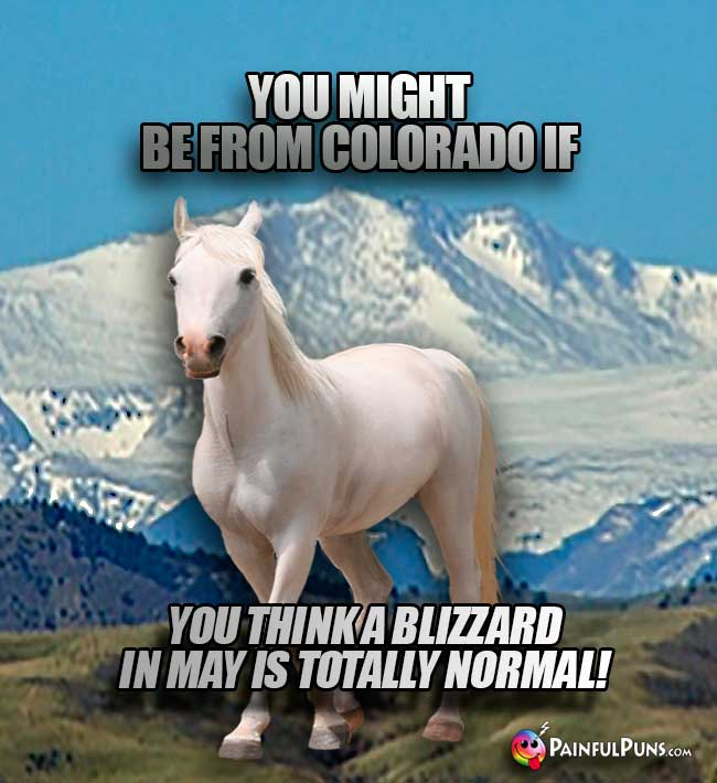 You might be from Colorado if you think a blizzard in May is totally normal!