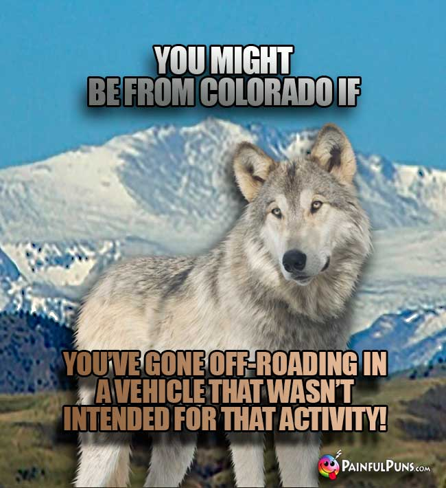 You might be from Colorado if you've gone off-roading in a vehicle that wasn't intended for tht activity!