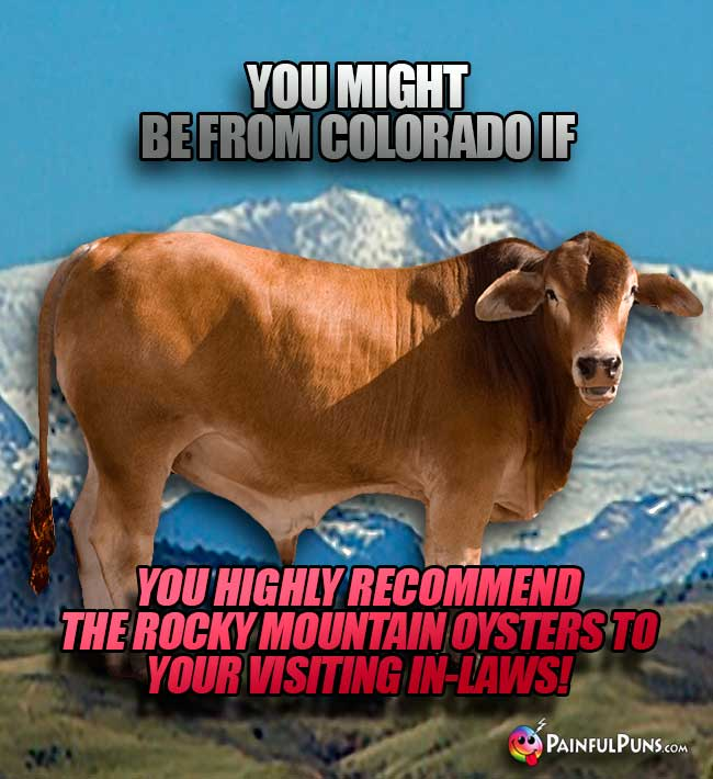 You might be from Colorado if you highly recomment the Rocky Mountain Oysters to your visiting in-laws!