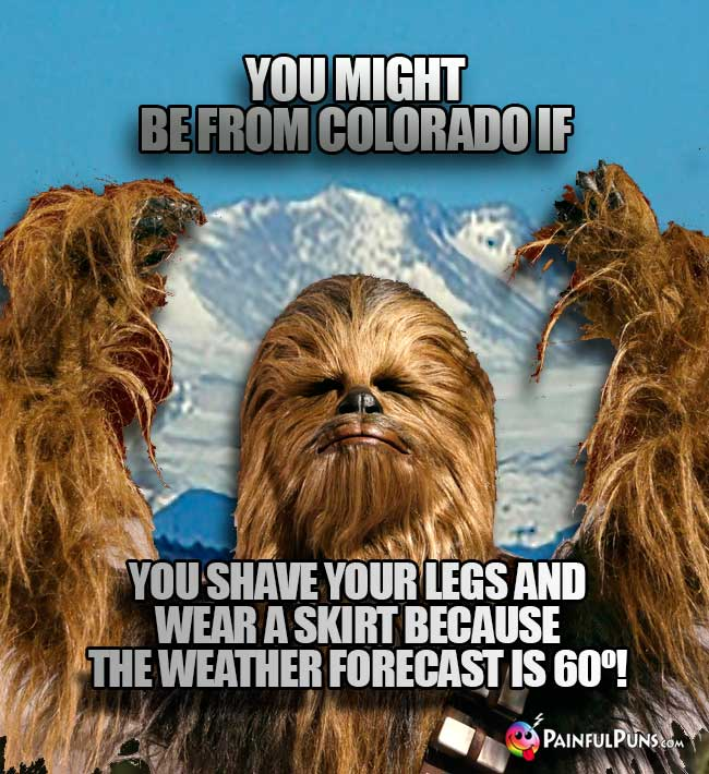 Wookie says: You might be from Colorado if you shave your leg and wear a skirt because the weather forecast is 60º!