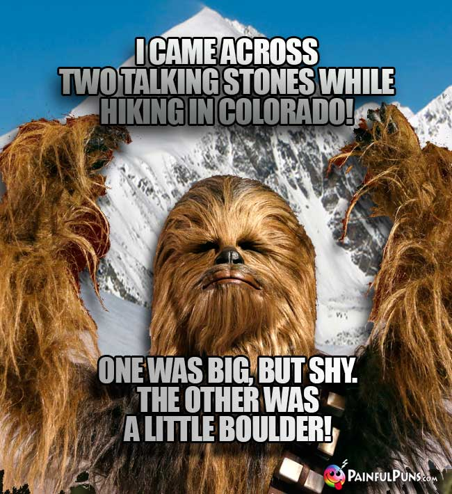 Wookie says: I came across two talking stones while hiking in Colorado! One was big, but shy. The other was a little Boulder!