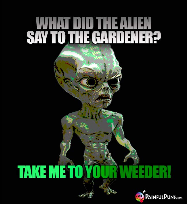 What did the alien say to the gardener? Take me to your weeder!