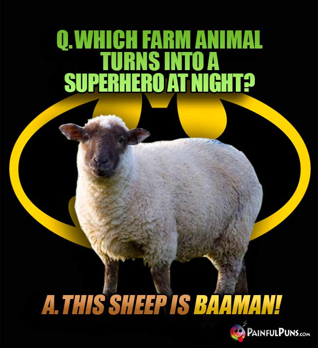 Q. Which farm animal turns into a superhero at night? A. This sheep is Baaman!
