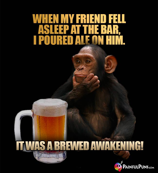 Beer-drinking chimps says: When my friend fell asleep at the bar, I poured ale on him. It was a brewed awakening!