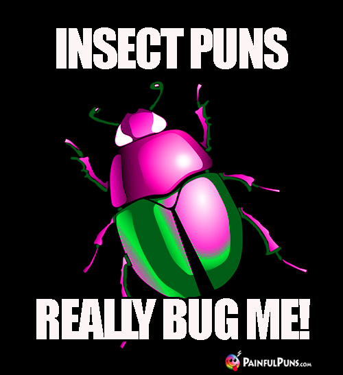 Insect Puns Really Bug Me!