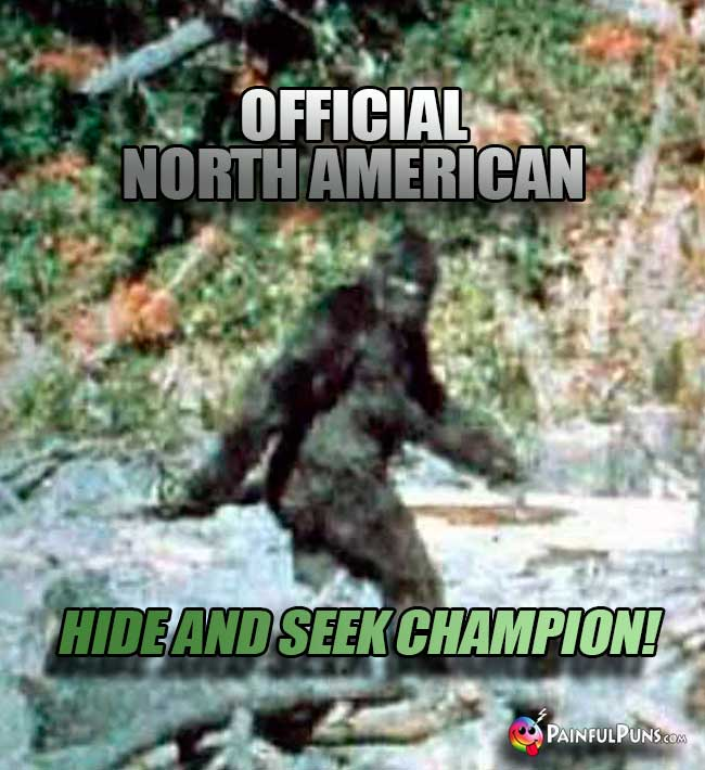 Bigfoot: Official North Amerian Hide and Seek Champion!