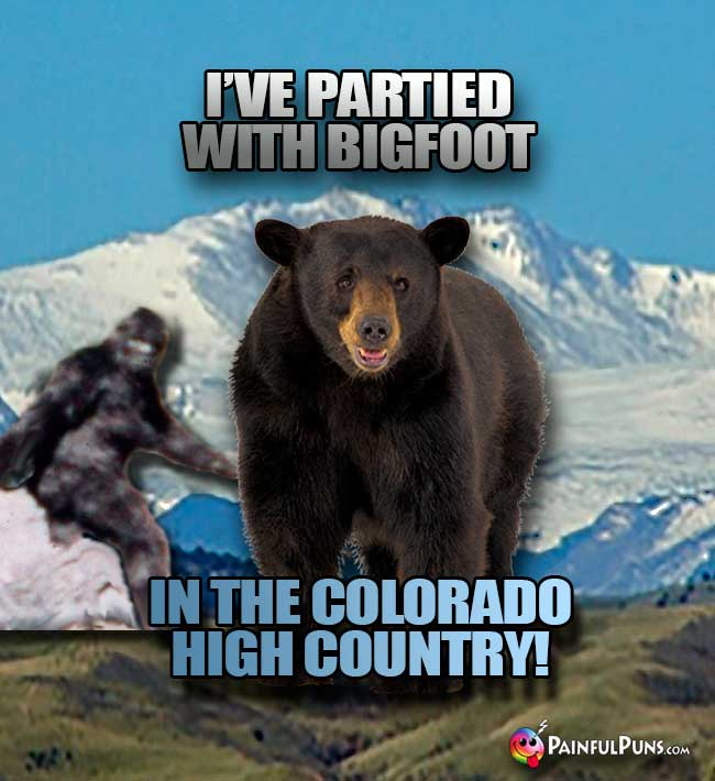 Bear says: I've partied with Bigfoot in the Colorado high country!