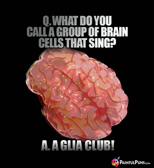 Q. What do you call a group of brain cells that sing? A. A glia club!