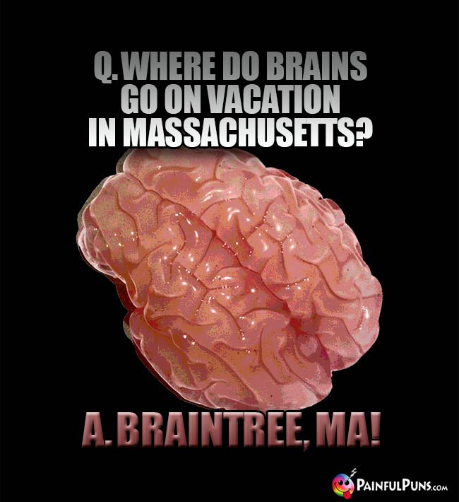 Q. Where do brains go on vacation in Massachusetts? A. Braintree, MA!