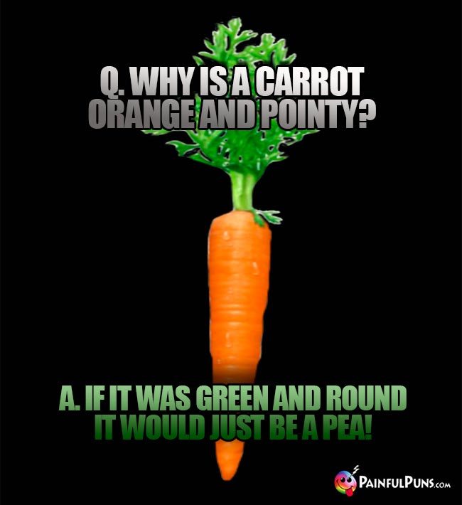 Q. Why is a carrot orange and pointy? A. If it was green and round it would just be a pea!