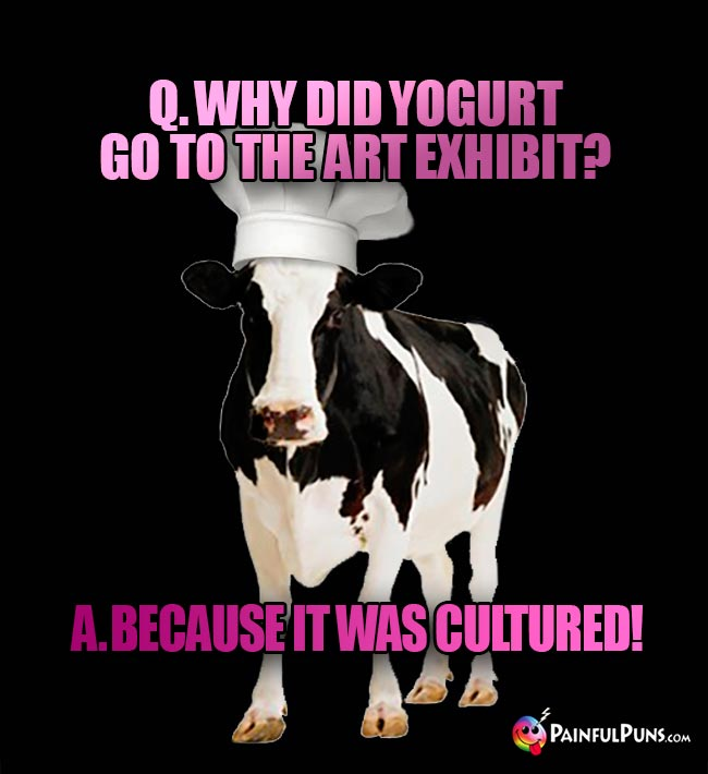 Cow Chef Asks: Why did yogurt go to the art exhibit? A. Because it was cultured!