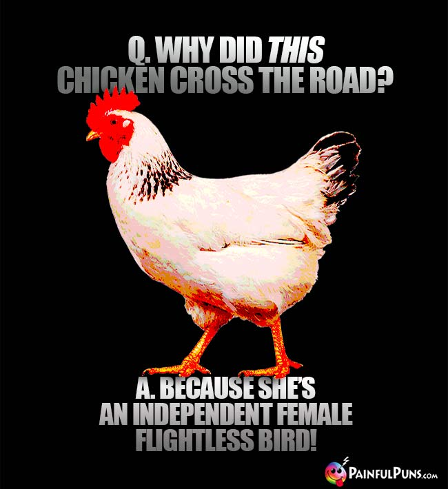 Q. Why did this chicken cross the road? A. Because she's an independent female flightless bird!