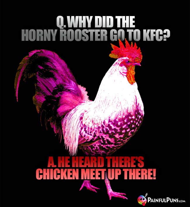 Q. Why did the horny rooster go to KFC? A. He heard there's chicken meet up there!
