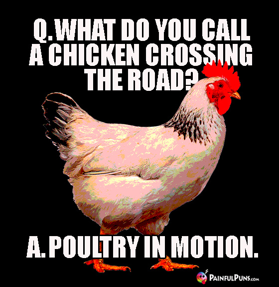 Q. What do you call a chicken crossing the road? A. Poultry in Motion.