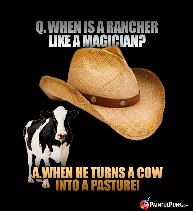 Q. When is rancher like a magician? A. When he turns a cow into a pasture!