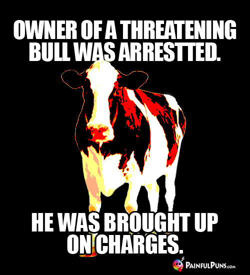 Owner of a threatening bull was arrested. He was brought up on charges.