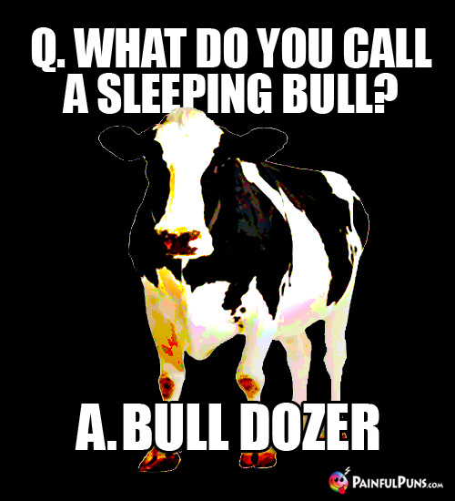 Q. What do you call a sleeping bull? A. Bull Dozer