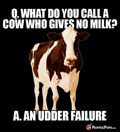 Q. What do you call a cow who gives no milk? A. An Udder Failure