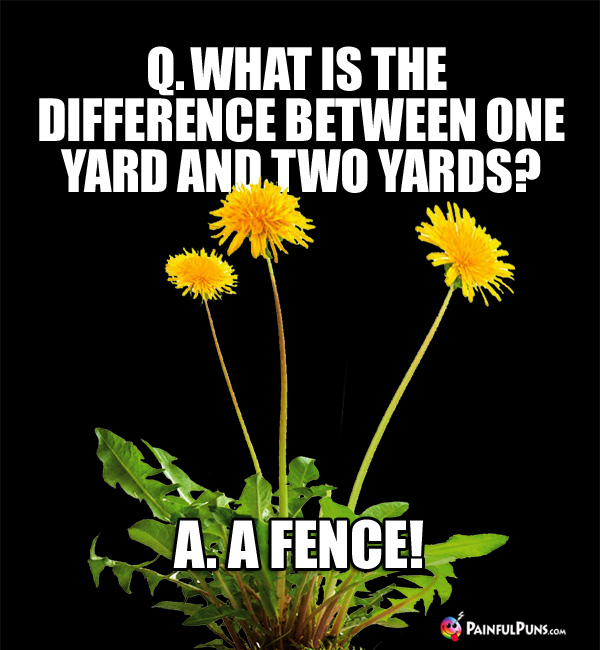 Q. What is the difference between one yard and two yards? A. A Fence!