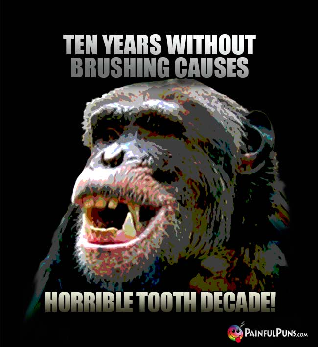 Chimp says: Ten years without brushing causes horrible tooth decade!