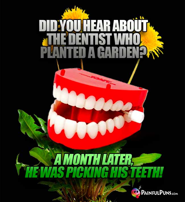 Did you hear about the dentist who planted a garden? A month later, he was picking his teeth!