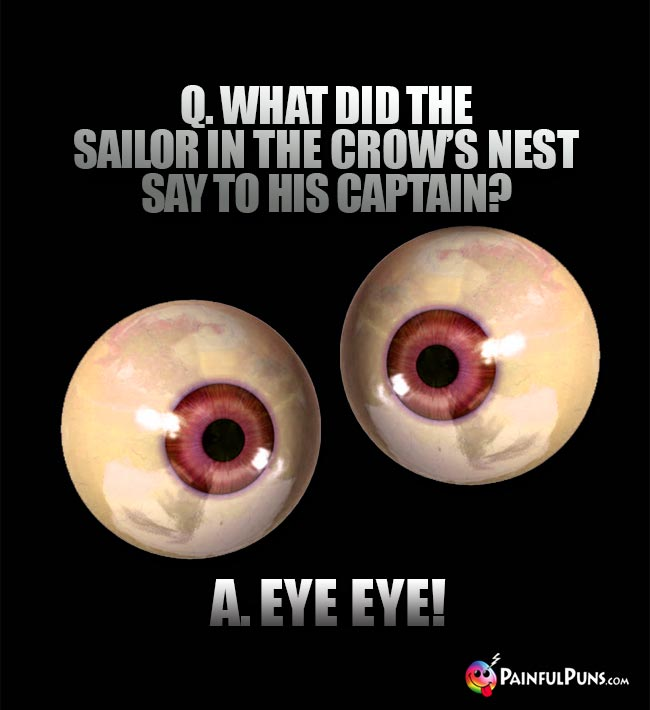 Q. What did the sailor in the crow's nest say to his captain? A. Eye Eye!