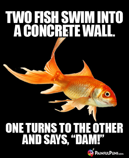 "Two fish swim into a concrete wall. One turns to the other and says, ""Dam!"""