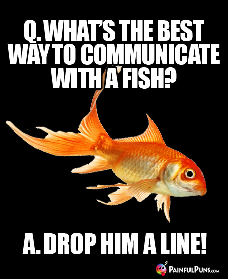 Q. What's the best way to communicate with a fish? A. Drop him a line!