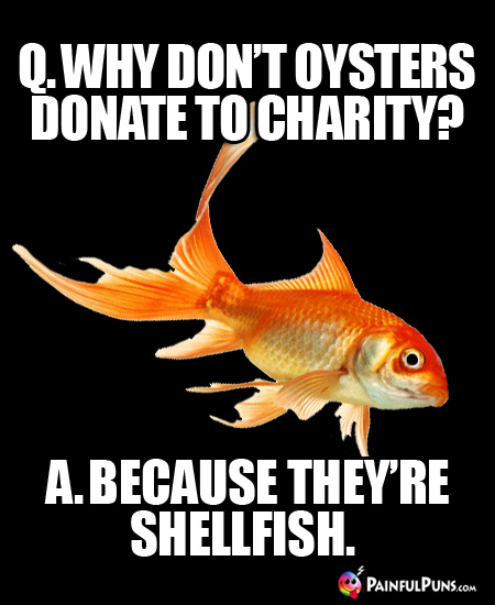 Q. Why don't oysters donate to charity? A. Because they're shellfish.