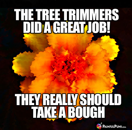 The tree trimmers did a great job! They really should take a bough