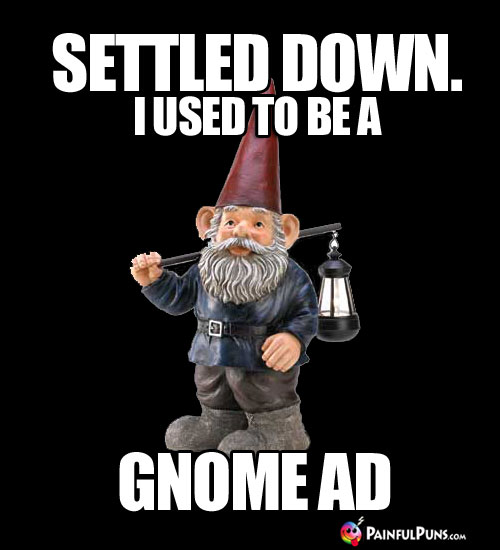 Settled Down. I used to be a Gnome Ad.
