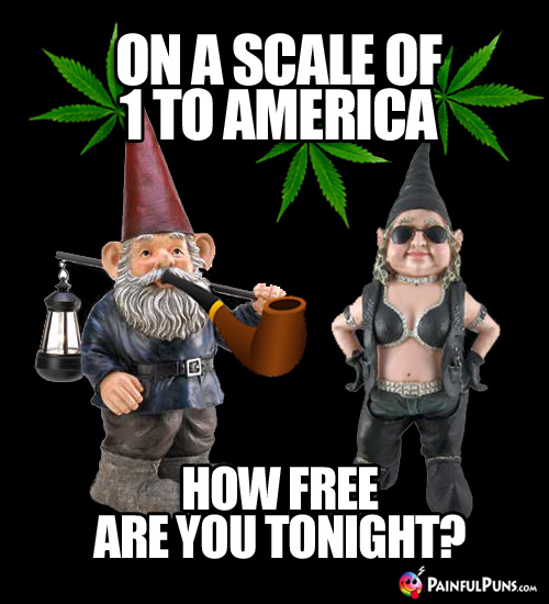 Pot Smoking Gnome Pick-Up Line: On a scale of 1 to America, how free are you tonight?