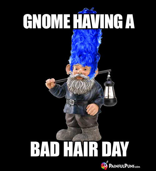 Garden Gnome, having a bad hair day!