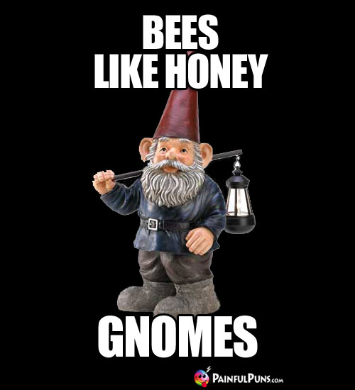 Bees Like Honey Gnomes