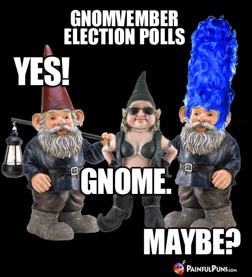Gnovember Election Polls: Yes! Gnome. Maybe?