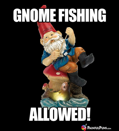 Gnome Fishing Allowed!