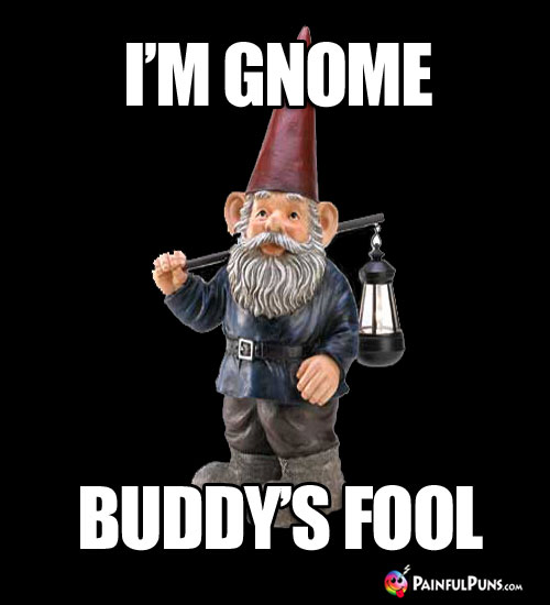 I'm Gnome Buddy's Fool