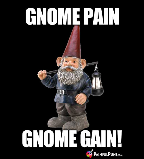 Workout Humor: Gnome Pain, Gnome Gain!
