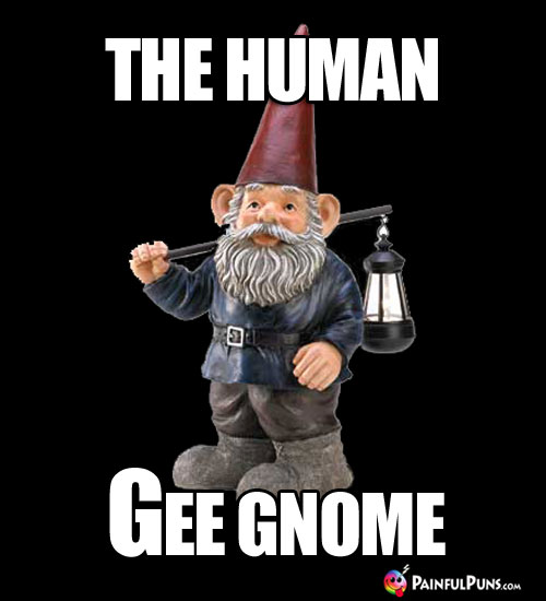The Human Gee Gnome