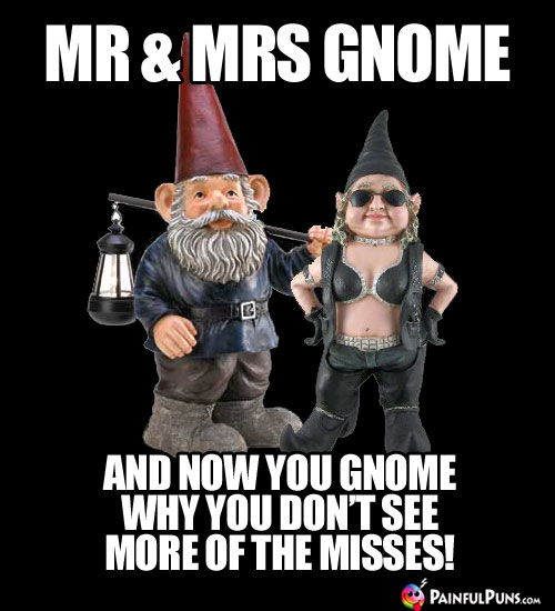 Mr & Mrs Gnome. And now you gnome why you don't see more of the misses!