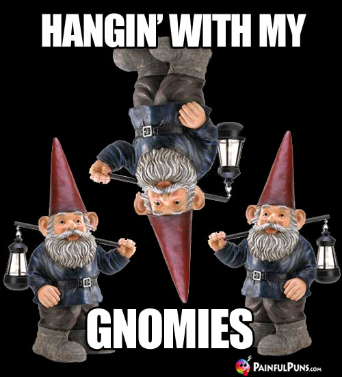 Hangin' with My Gnomies