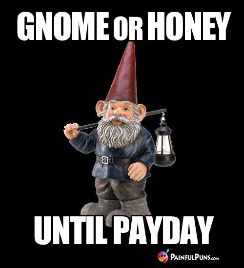 Gnome or Honey Until Payday