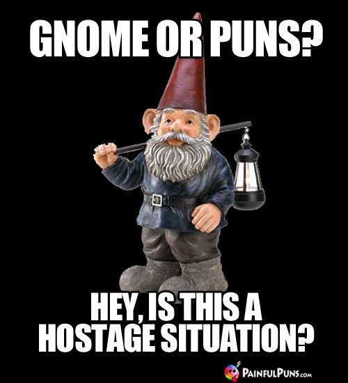 Gnome or Puns? Hey, is this is hostage situation?