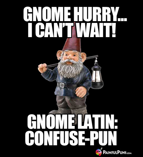Gnome hurry... I can't wait! Gnome Latin: Confuse-Pun