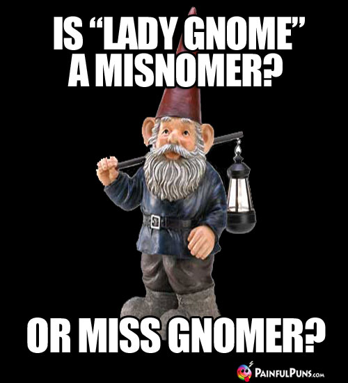 "Is ""Lady Gnome"" a misnomer? Or Miss Gnomer?"